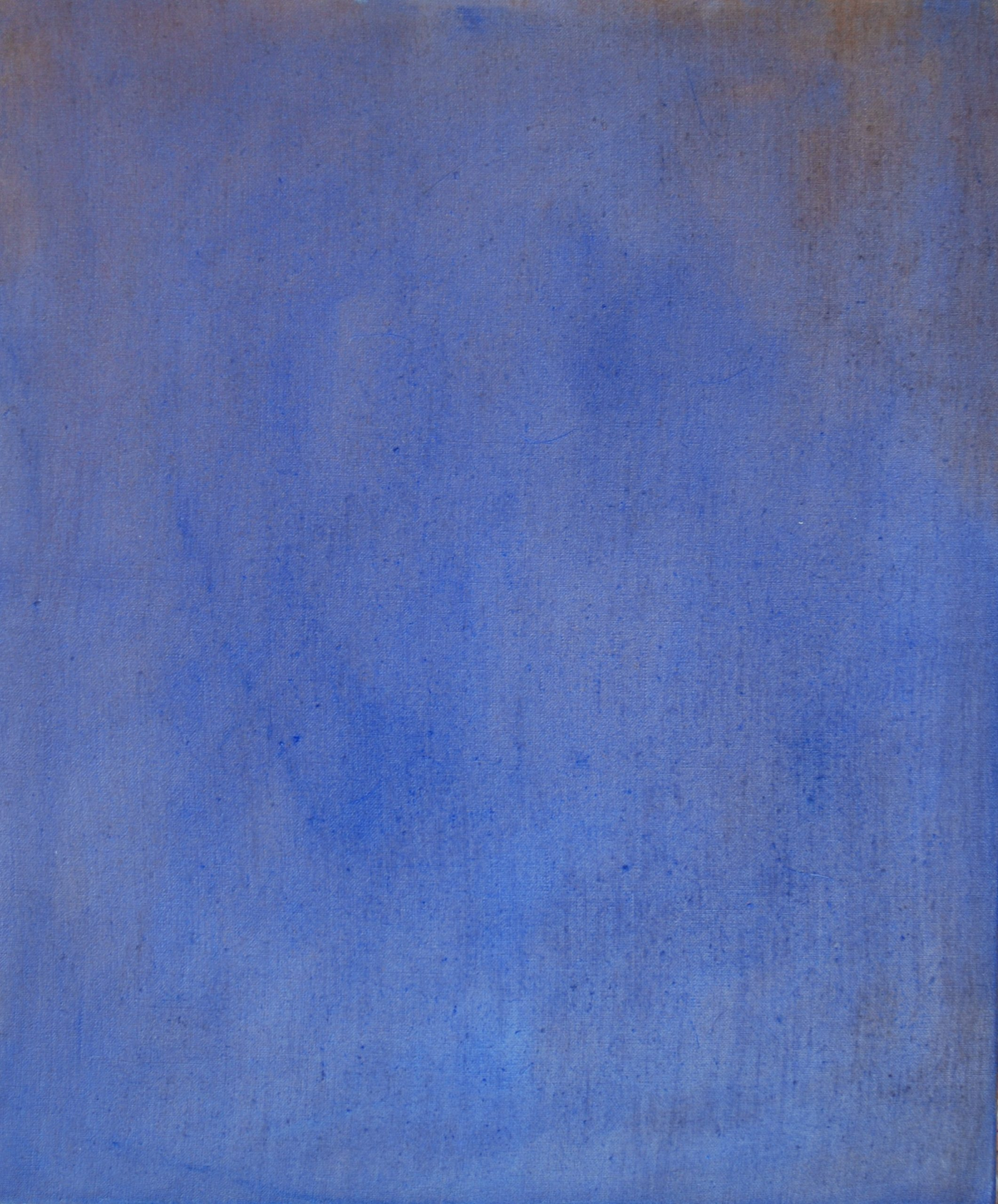 métamorphose 13 huile sur toile 65x55 cm